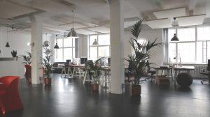 kantoorinrichting met planten